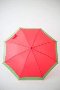 роспись зонта